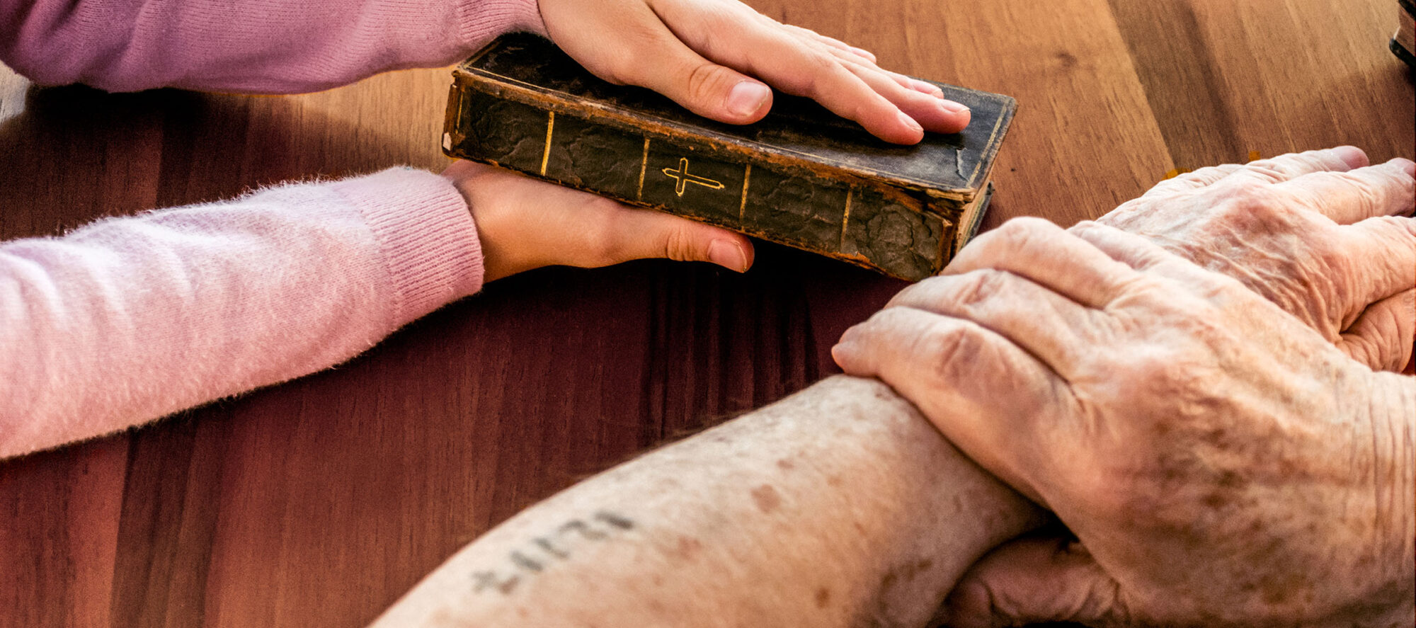 Close Up Hands Of Great Grandmother With  Auschwitz Concentration Camp Number Showing Old Holy Bible