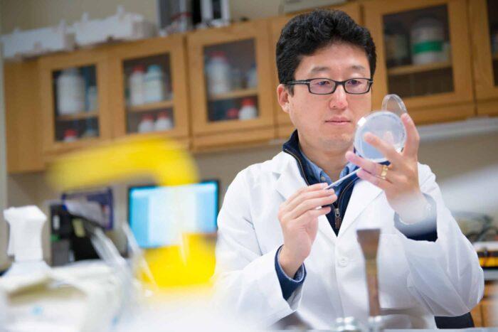 Biology researcher taking sample