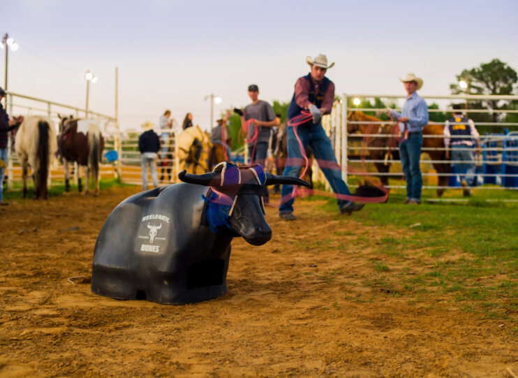 Students roping a plastic steer.
