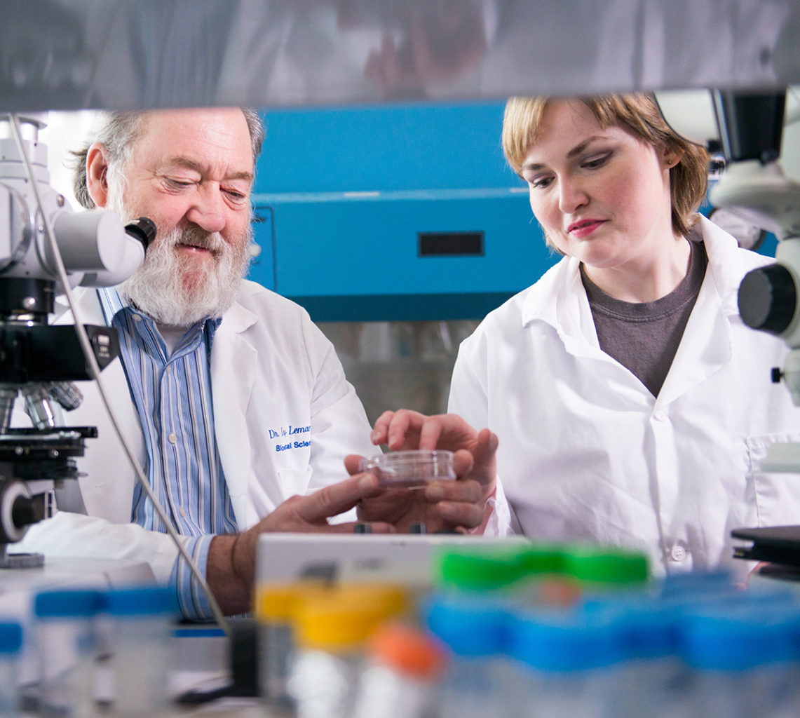 Two professors of the Biomedical Institute for Regenerative Research (BIRR) working in the lab.