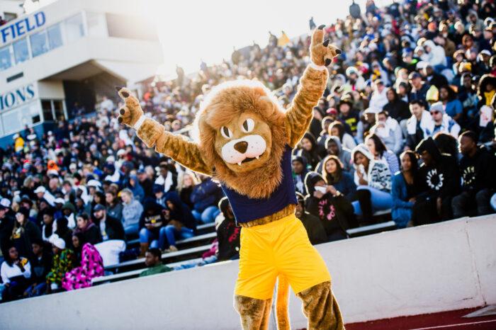 Lion mascot at a football game.