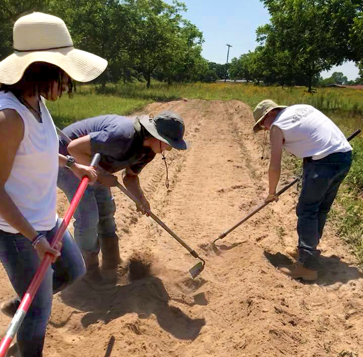 Tamuc students working on prepare the soil before planting crops to gain their hands-on experience.