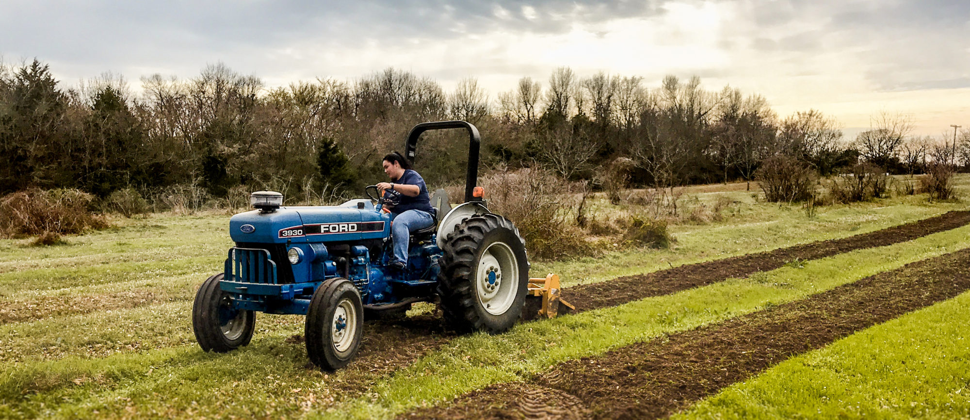 Tamuc student gaining hand-on  experience plowing a field.