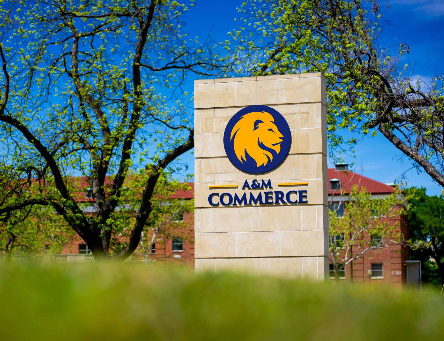 A&M-Commerce sign on campus.