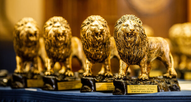 Lions statues awards.