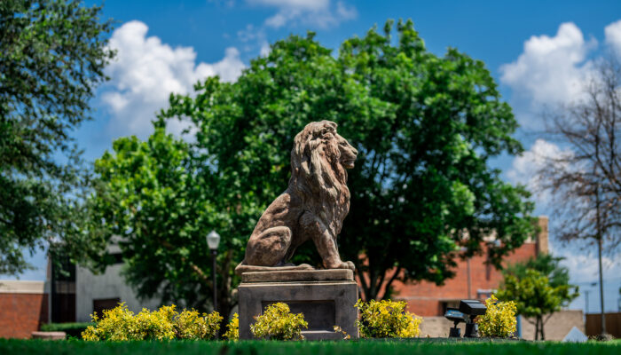 TAMUC lion statue